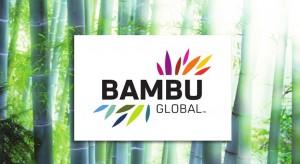 bambu-global-website-design